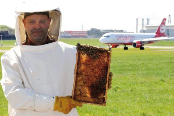 Un altro esempio più vicino a noi è l'aeroporto di Stoccarda, in Germania, dove nel sedime aeroportuale è stato introdotto l'allevamento di api di quattro diverse specie che serve, tramite l'analisi del miele, a valutare la qualità dell'aria. Il miele viene infatti prodotto dalle api che raccolgono i pollini sui fiori nel raggio di tre chilometri e, una volta controllato e confermata la sua qualità, viene regolarmente messo in vendita. L'aeroporto di Stoccarda è molto impegnato in iniziative per il rispetto dell'ambiente e circa la metà dei 400 ettari dello scalo sono coperti di verde.